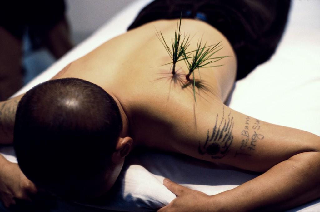 Yang Zhichao, Planting Grass