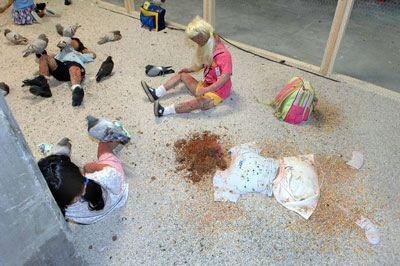 kader-attia-pigeons-enfants--flying-rats